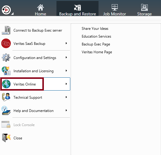 What are Veritas Backup Exec 20 features 463